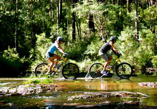 Byron Bay Rainforest Adventure Tour.