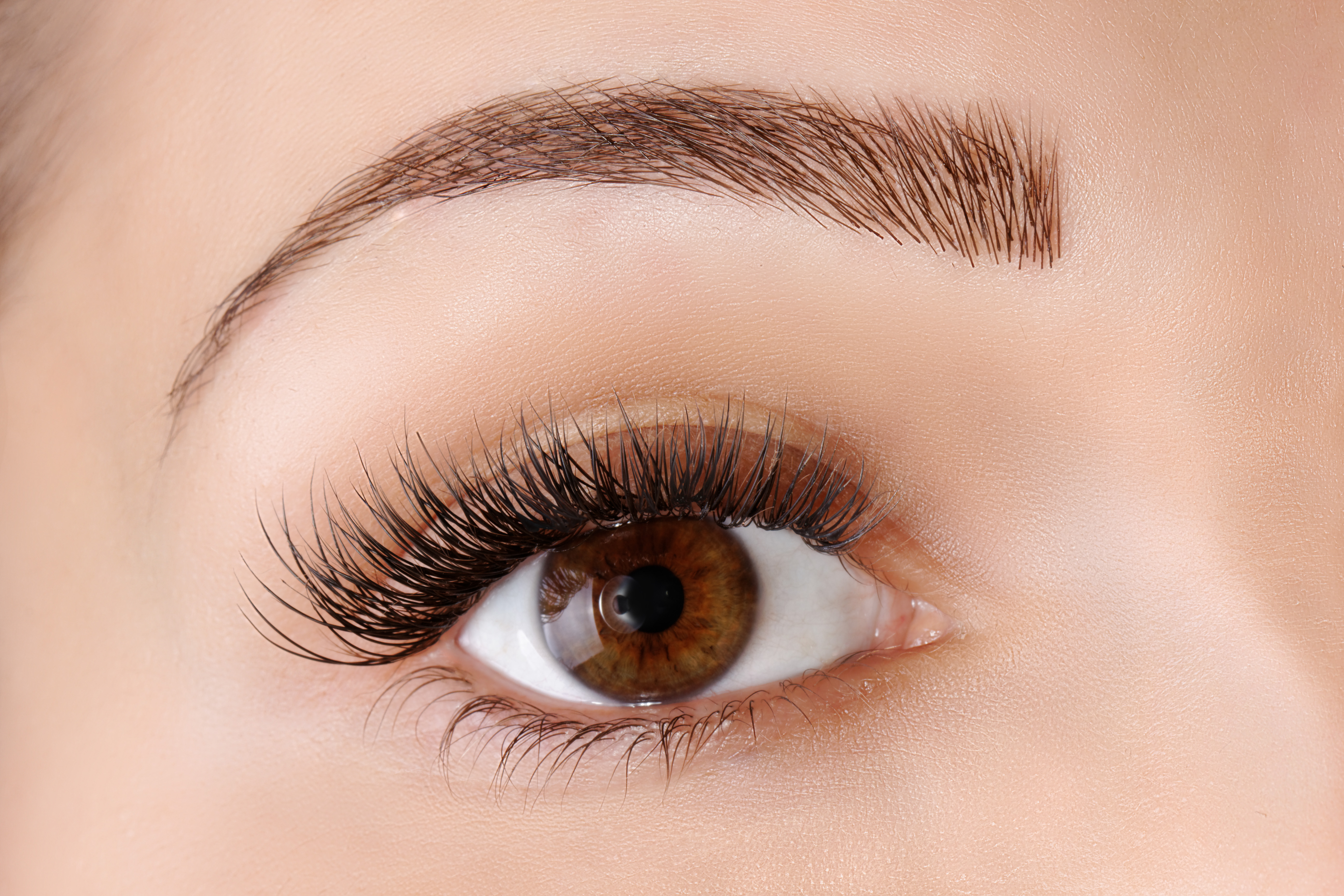 Trend Alert Holiday Brow Extensions Not In Kansas Anymore